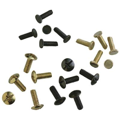 Assorted Antique Brass and Polished Brass Fan Screws (20-Pack)